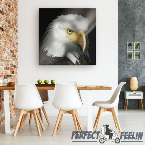 Eagle Portrait 1 Piece Square Canvas Wall Art K070819 - Made