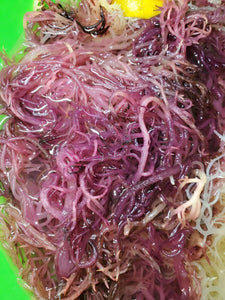 1/2 lb Purple Natural Dried Sea Moss - CGI Green