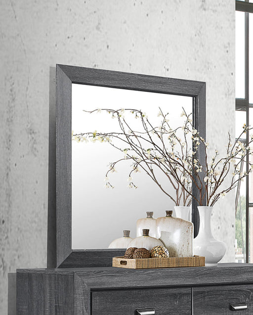 Homelegance Beechnut Mirror in Gray 1904GY-6 image