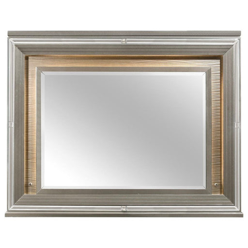 Homelegance Tamsin Mirror in Silver Grey Metallic 1616-6 image