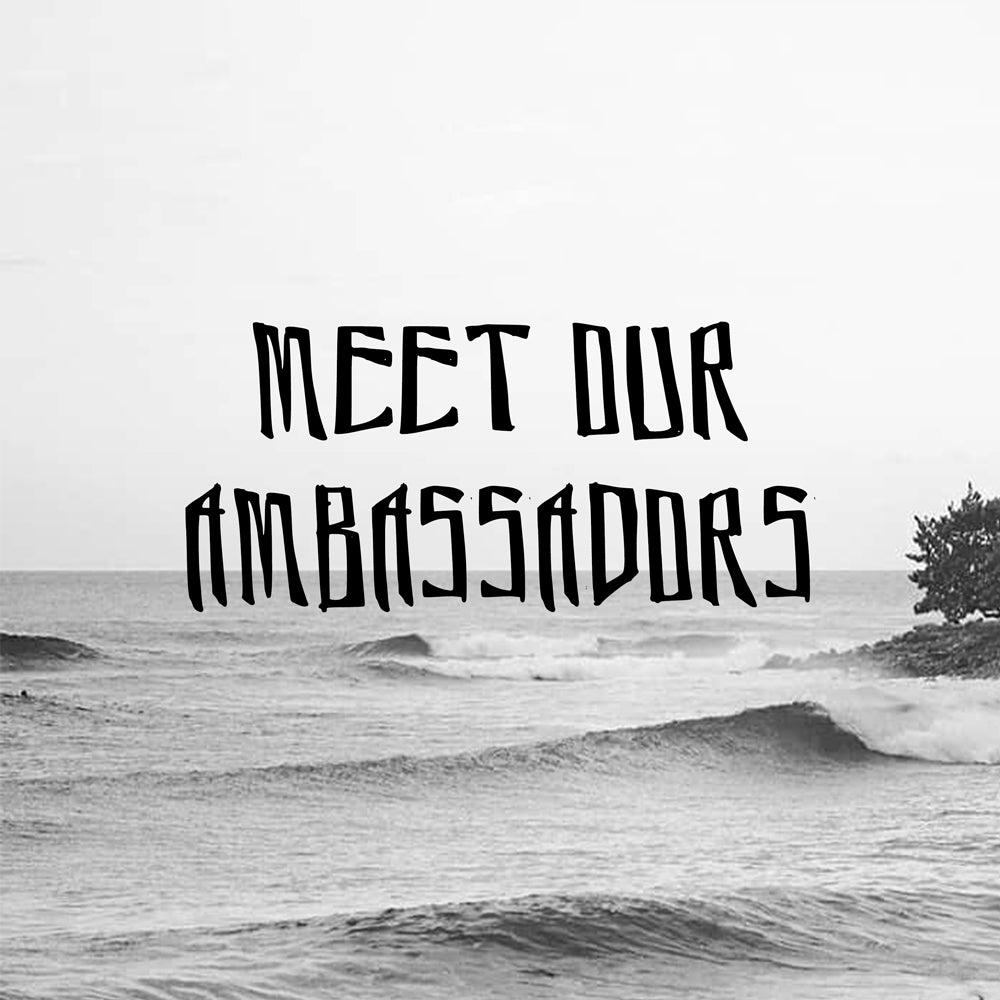 Link to Ambassadors Page