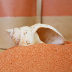 Orange Eco Play Sand