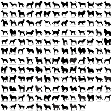 Load image into Gallery viewer, Dog Silhouette Custom Engraved Tumbler - Over 450 Breeds!
