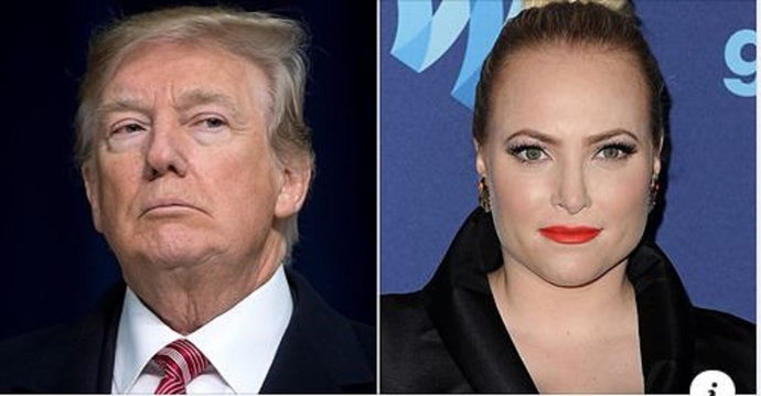 'I Like People Who Don't Lose Arizona': Meghan McCain Trolls Trump with Meme Featuring Late Dad