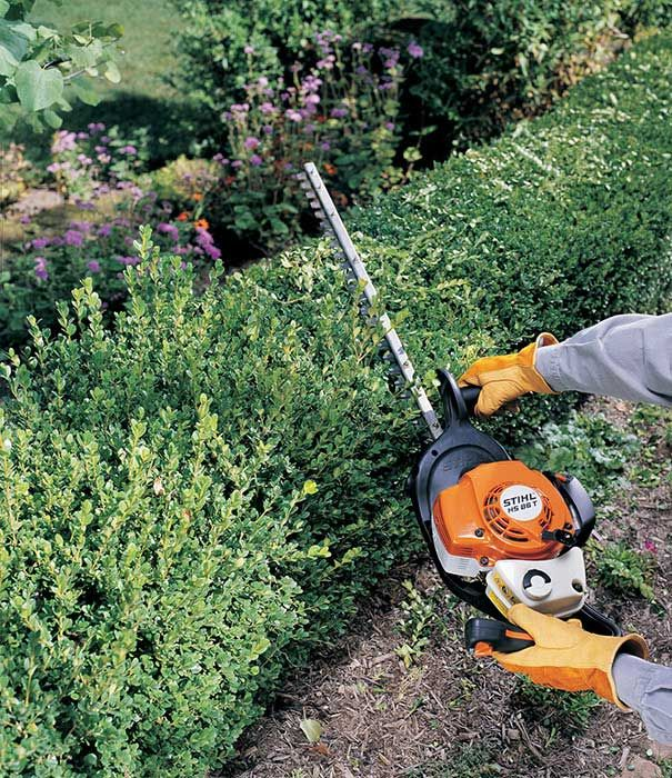 Hire a Petrol Powered  Hedge Trimmer