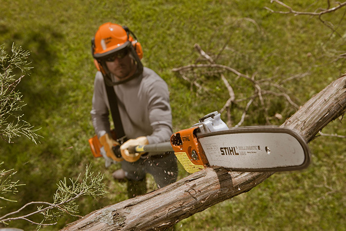 Hire a Long Reach Pruner - Tree Lopper