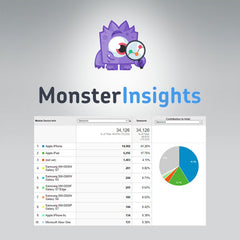 MonsterInsights – AMP Addon