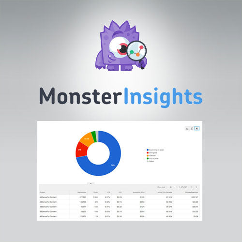 MonsterInsights – Ads Addon