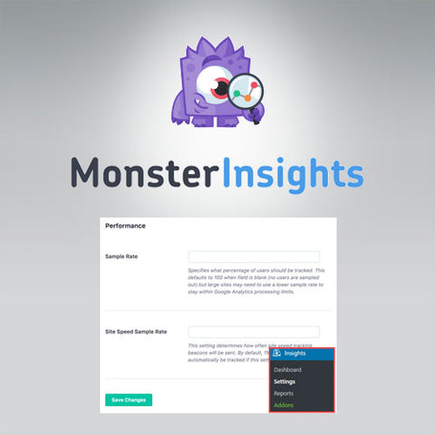 MonsterInsights – Performance Addon