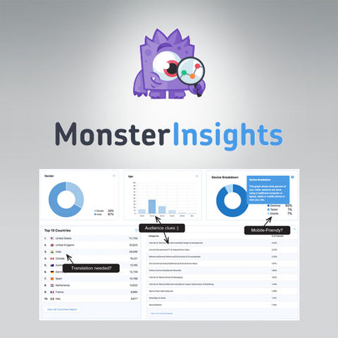 MonsterInsights Pro Google Analytics Premium
