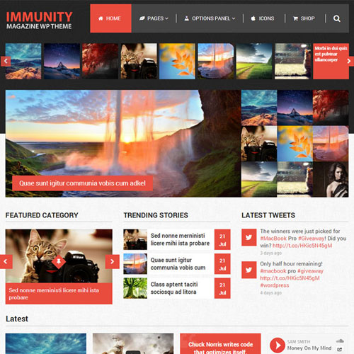 MyThemeShop Immunity WordPress Theme