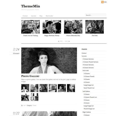 Themify Thememin WordPress Theme