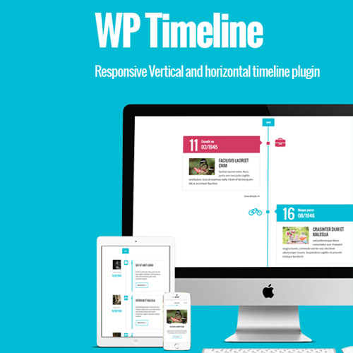 WP Timeline – Responsive Vertical and Horizontal timeline plugin