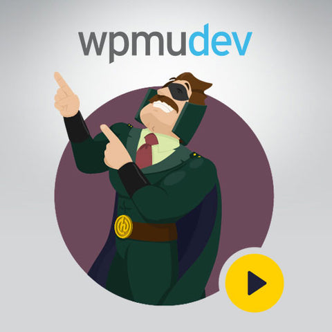 WPMU DEV Hustle