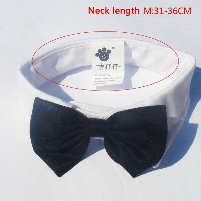 Handsome Formal Bow Tie Groom Tuxedo For Cats and Dogs