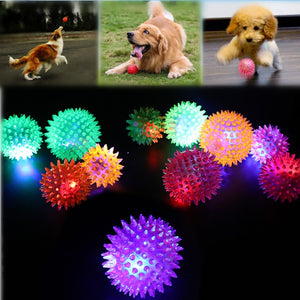Interactive Rubber Balls Lighting Dog Toy