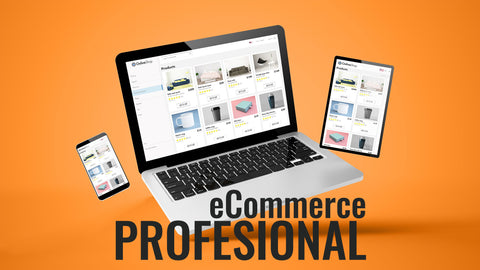 eCommerce Website Development Professional Package