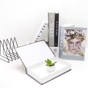 Premium Decorative Faux Book (No Pages)