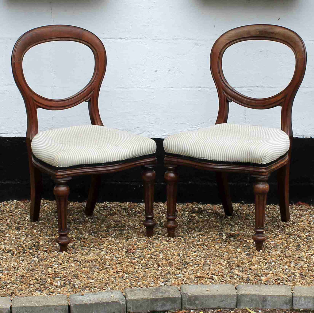 Pair of Victorian Antique Mahogany Balloon Back Dining Chairs-Origin Antiques