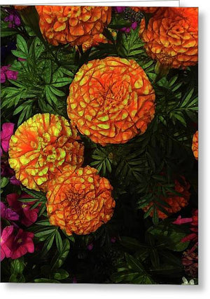 Large Marigolds - Greeting Card