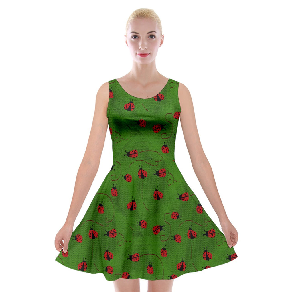 Ladybugs  Velvet Skater Dress