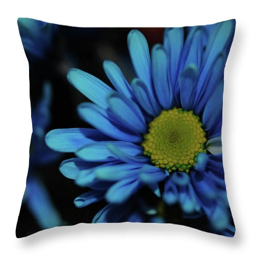 Blue Daisy - Throw Pillow