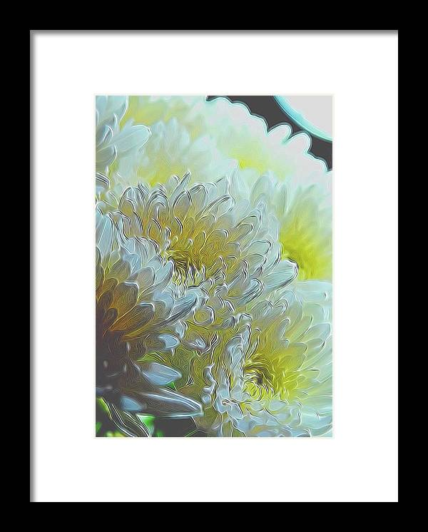 Chrysanthemums in White Light - Framed Print