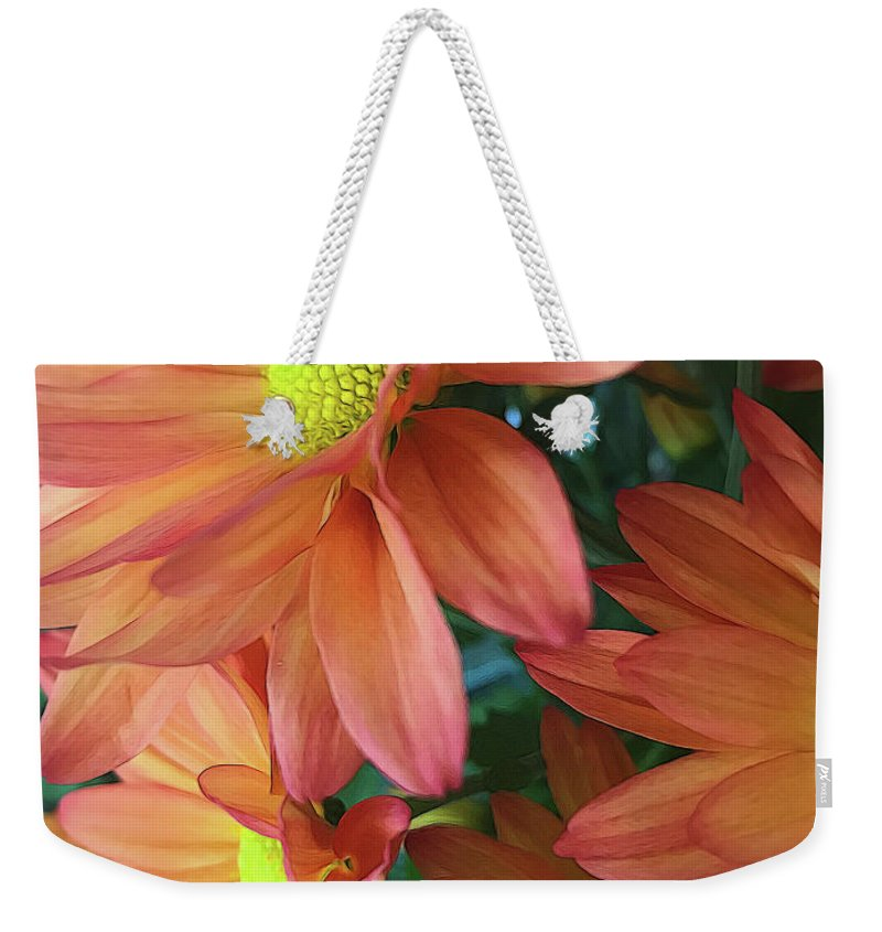 Cream and Pink Daisies Close Up - Weekender Tote Bag