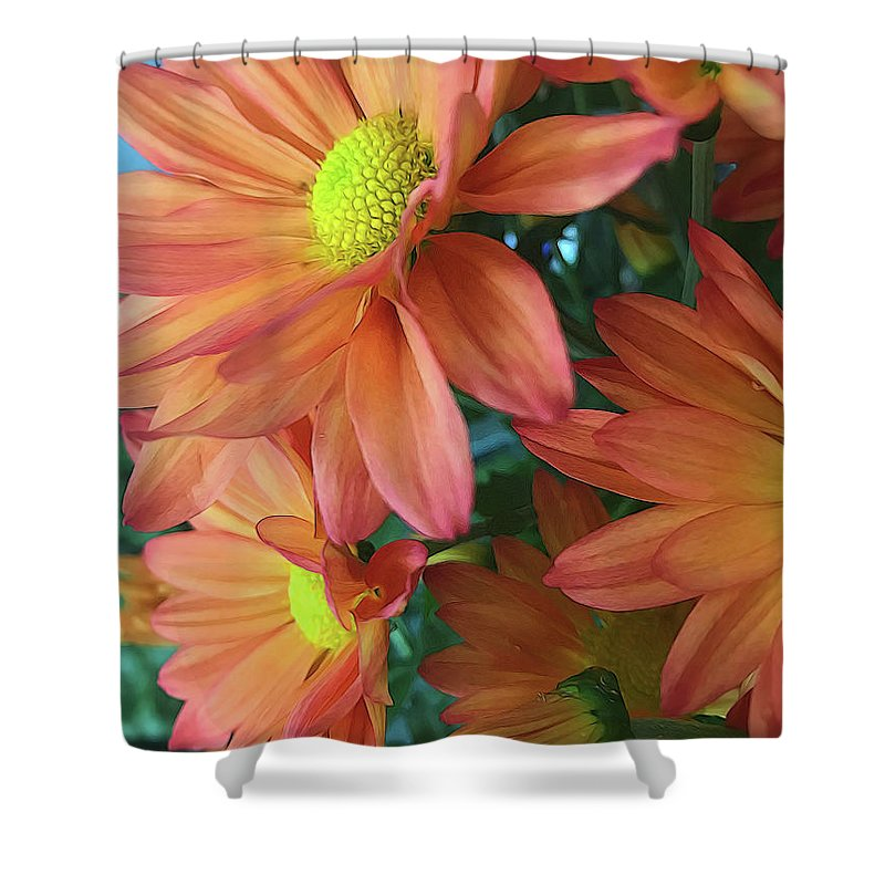 Cream and Pink Daisies Close Up - Shower Curtain