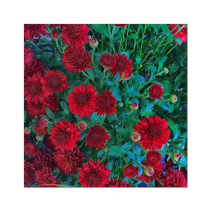Red Mums Hahnemühle Photo Rag Print