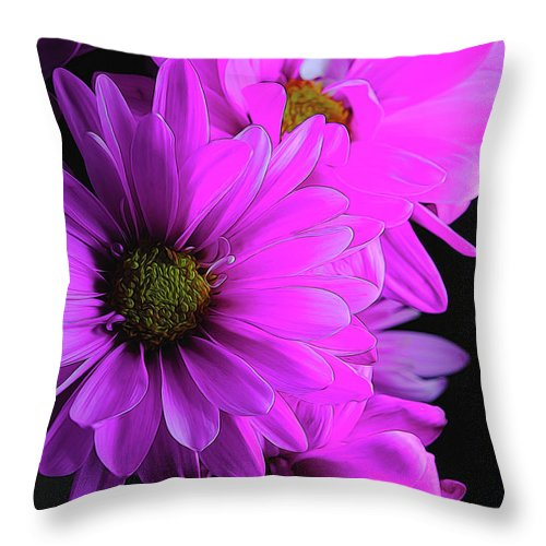 Pink Daisies - Throw Pillow