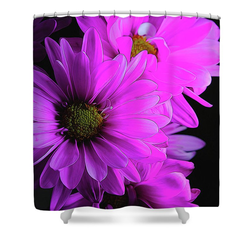 Pink Daisies - Shower Curtain