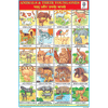 ANIMALS & THEIR YOUNG ONES CHART SIZE 12X18 (INCHS) 300GSM ARTCARD - Indian Book Depot (Map House)