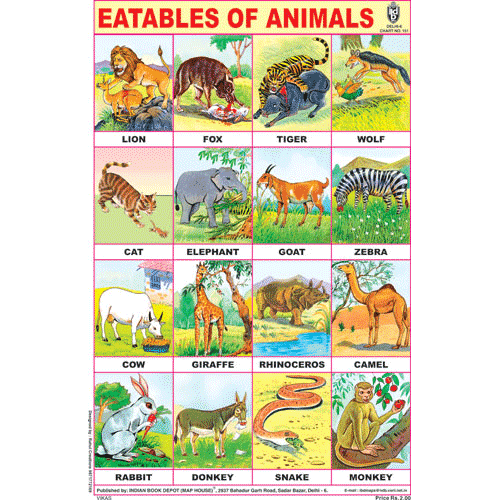 EATABLES OF ANIMALS CHART SIZE 12X18 (INCHS) 300GSM ARTCARD - Indian Book Depot (Map House)