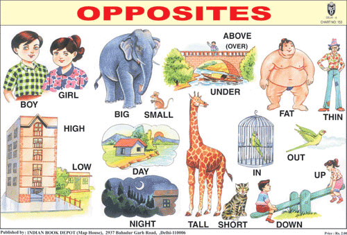 OPPOSITES CHART SIZE 12X18 (INCHS) 300GSM ARTCARD - Indian Book Depot (Map House)