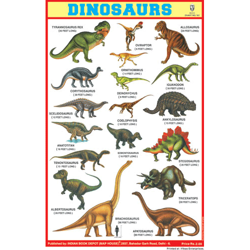 DINOSAURS SIZE 24 X 36 CMS CHART NO. 161 - Indian Book Depot (Map House)
