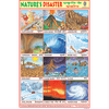 NATURE'S DISASTER (TSUNAMI) SIZE 24 X 36 CMS CHART NO. 163 - Indian Book Depot (Map House)