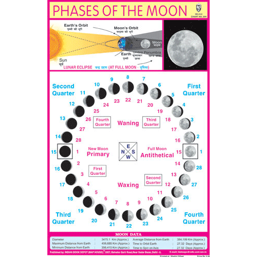 PHASES OF THE MOON CHART SIZE 12X18 (INCHS) 300GSM ARTCARD - Indian Book Depot (Map House)