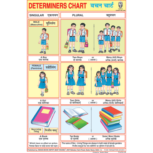 DETERMINERS CHART SIZE 12X18 (INCHS) 300GSM ARTCARD - Indian Book Depot (Map House)