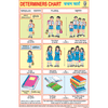 DETERMINERS CHART SIZE 24 X 36 CMS CHART NO. 206 - Indian Book Depot (Map House)