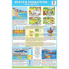 WATER POLLUTION CHART SIZE 12X18 (INCHS) 300GSM ARTCARD