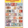 FOREIGN CURRENCY SIZE 24 X 36 CMS CHART NO. 213 - Indian Book Depot (Map House)