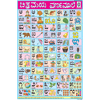 KANNADA ALPHABET SIZE 24 X 36 CMS CHART NO. 243 - Indian Book Depot (Map House)