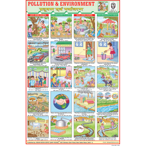 ENVIRONMENT (POLLUTION CHART) CHART SIZE 12X18 (INCHS) 300GSM ARTCARD - Indian Book Depot (Map House)