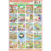 ENVIRONMENT (POLLUTION CHART) SIZE 24 X 36 CMS CHART NO. 24 - Indian Book Depot (Map House)