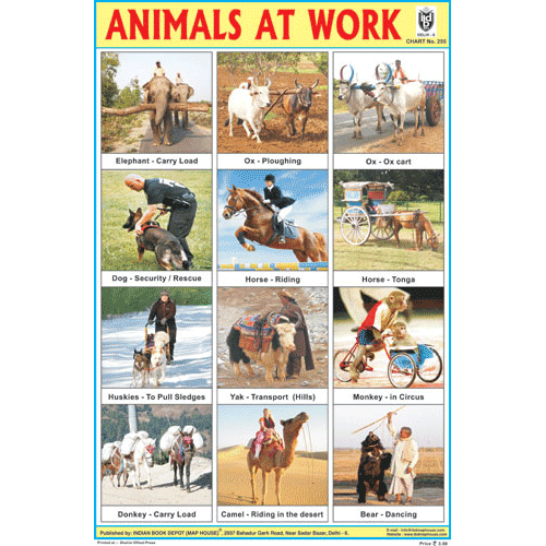 ANIMALS AT WORK SIZE 24 X 36 CMS CHART NO. 255 - Indian Book Depot (Map House)