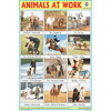 ANIMALS AT WORK CHART SIZE 12X18 (INCHS) 300GSM ARTCARD - Indian Book Depot (Map House)