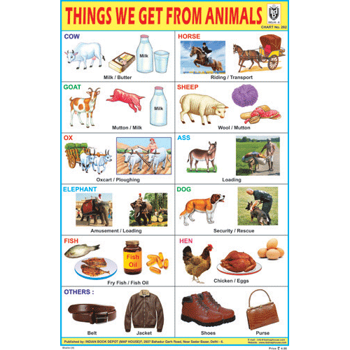 THINGS WE GET FROM ANIMALS SIZE 24 X 36 CMS CHART NO. 262 - Indian Book Depot (Map House)