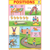POSITION CHART SIZE 12X18 (INCHS) 300GSM ARTCARD - Indian Book Depot (Map House)
