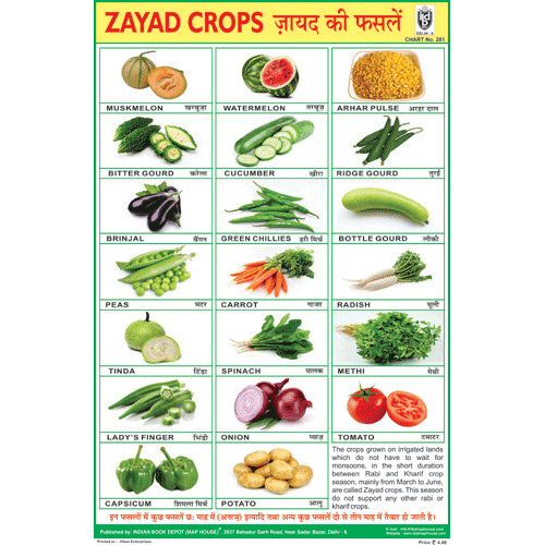 RABI CROPS CHART SIZE 12X18 (INCHS) 300GSM ARTCARD - Indian Book Depot (Map House)
